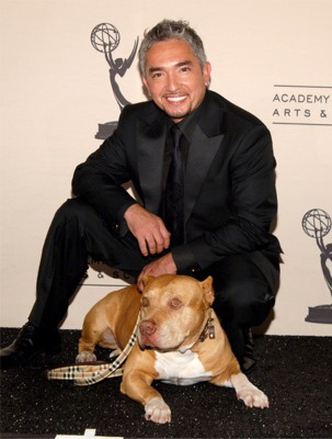 Cesar Millan and his dog Daddy
