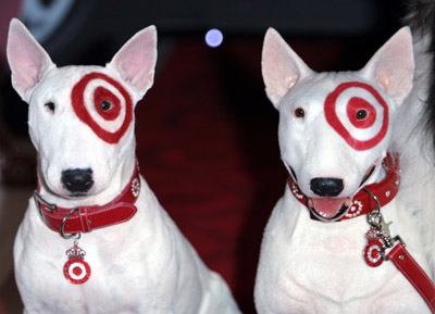 Target dog mascot breed What kind of dog is the target mascot
