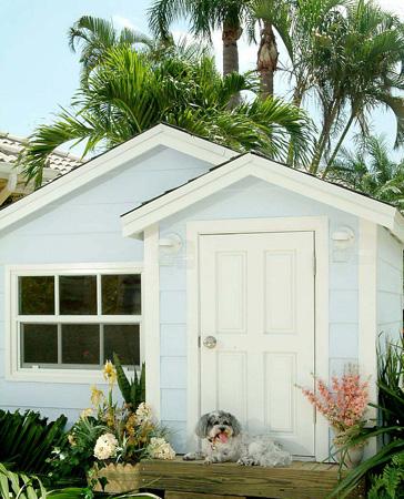 Doggie Mansion
