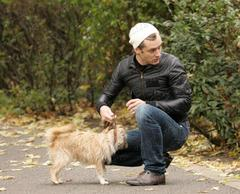 jude_dogs_11606b.jpg