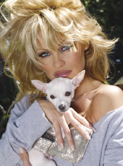 Photo of Pamela Anderson & her Dog Luca