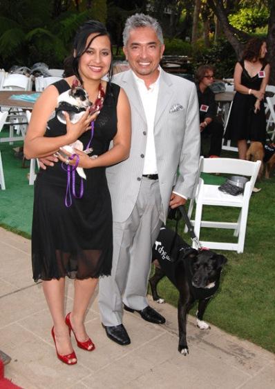 Why Did Cesar Millan Wife Divorce Him