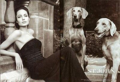 Angelina Jolie in St. John ad