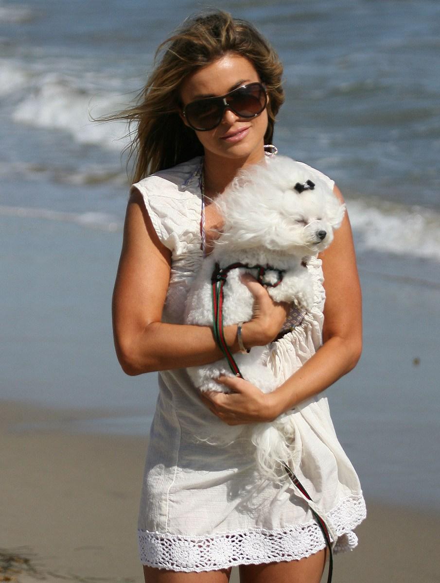 Carmen Electra's Furry Friend on the Beach