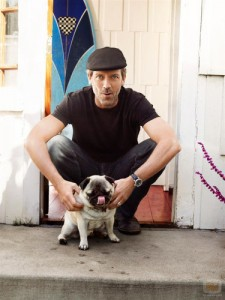 hugh laurie pug dog