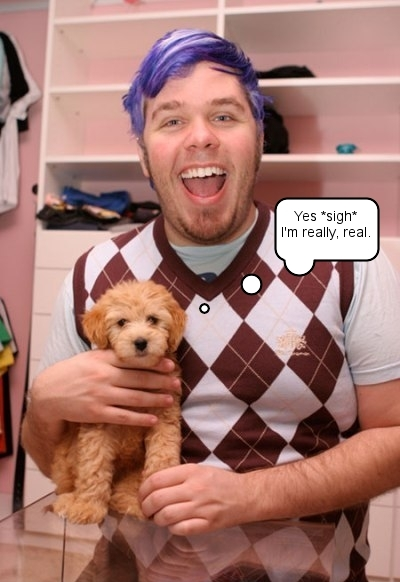 Perez Hilton and his dog, Teddy