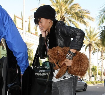 rihanna hits the streets with dj oliver in tow