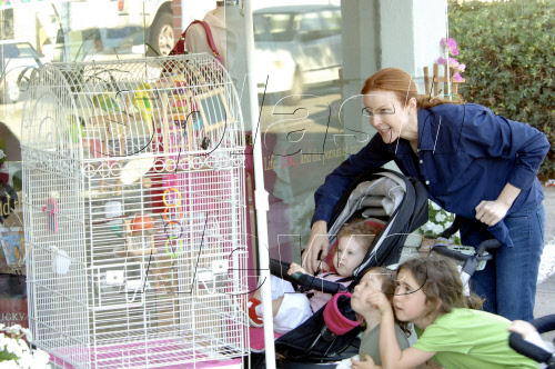 Marcia Cross and Twins