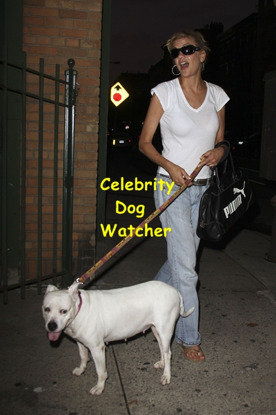 Celebrity sightings nyc august