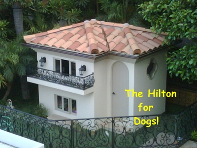 parisdoggiemansion