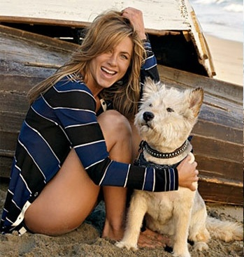 jennifer aniston dog norman