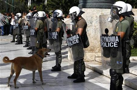 sausage dog greece riot