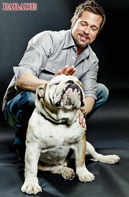 Brad Pitt Archives Celebrity Dog Watcher