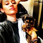 miley cyrus dog happy