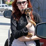 rumer willis dog