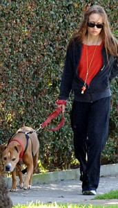fiona apple walking her pit bull dog