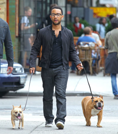 john legend bulldogs
