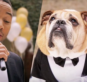 john legend bulldog video