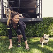 chrissy tiegen french bulldog