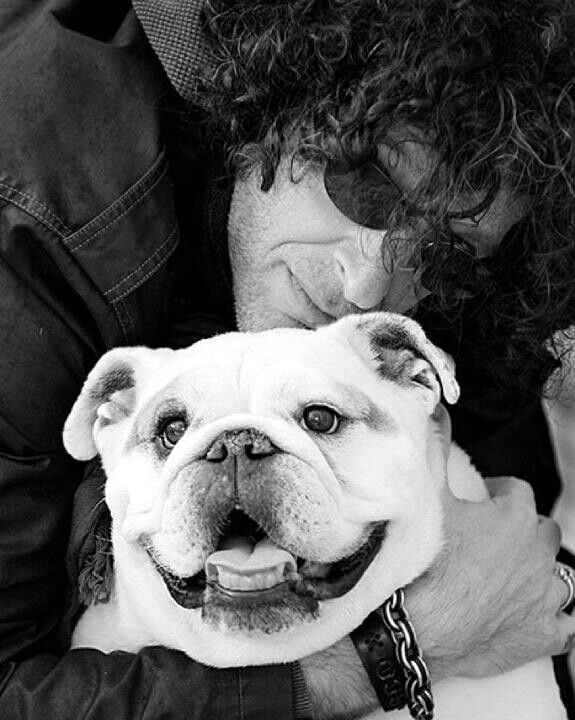 howard stern bulldog