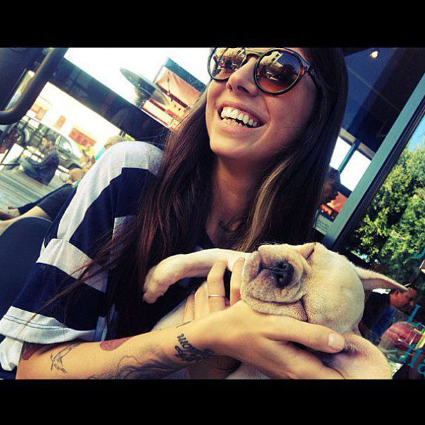 Christina Perri Frenchie dog Pistachio