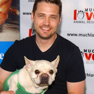 Jason Priestley French Bulldog Swifty