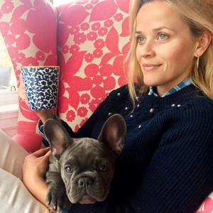 Reese Witherspoon French Bulldog Name Pepper