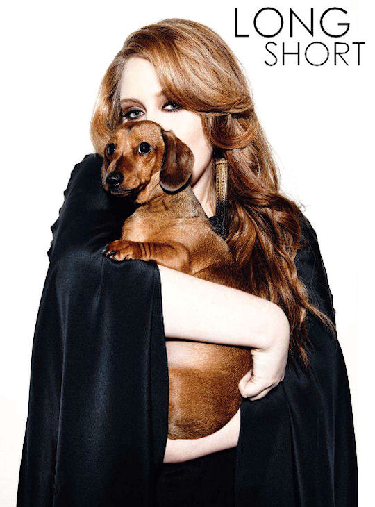adele dachshund name louie