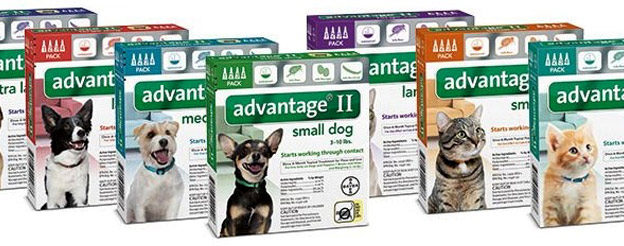 Advantage Ii Coupons New 20 Off Free Shipping
