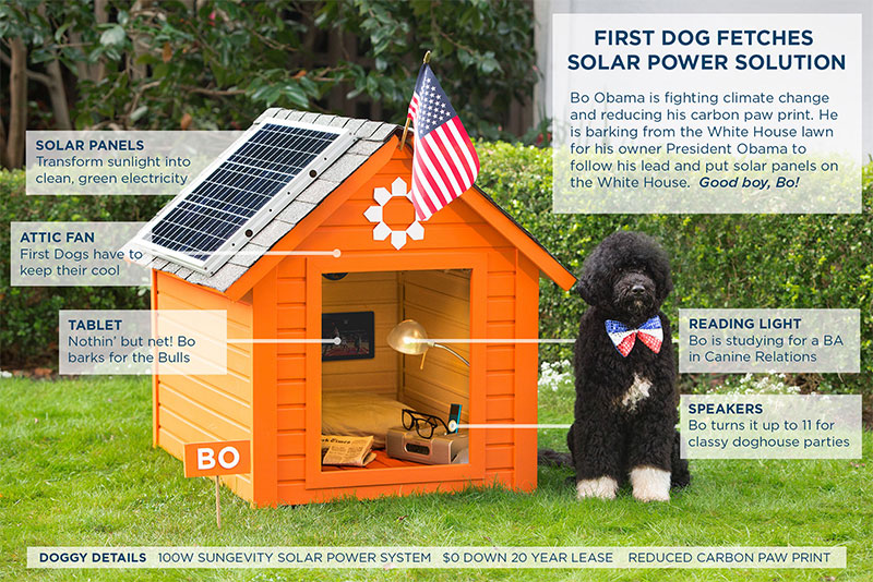 barack obama dog house
