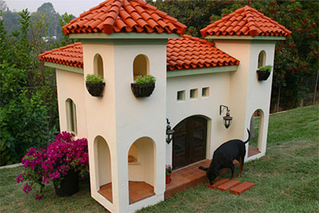 rachel hunter celebrity doghouse