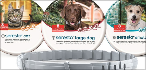 image about Printable Coupon for Seresto Flea Collar named 3 Seresto Coupon codes (Refreshing!) 20-25% Off Flea Tick Collars