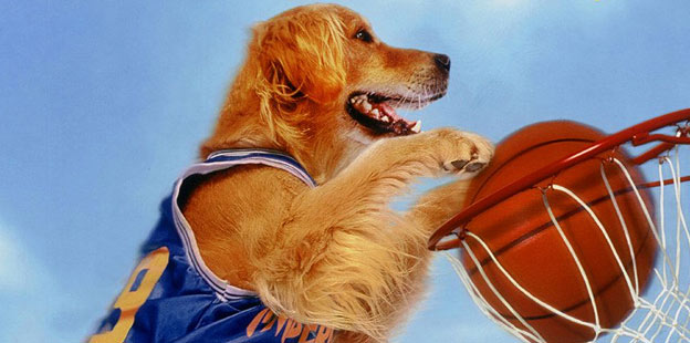 air bud dunk